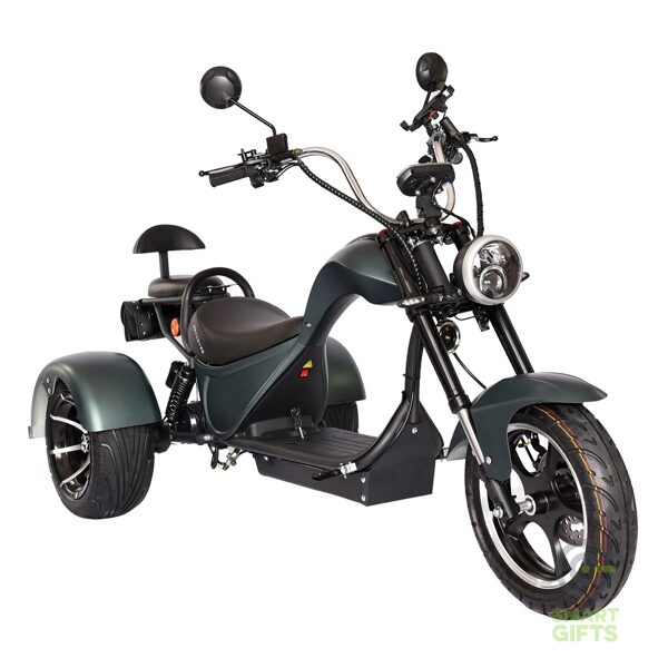 Электроскутер SKYBOARD TRIKE Chooper-2000 Хаки